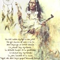 """""""citation du jour"""" Sagesse Amérindienne"""