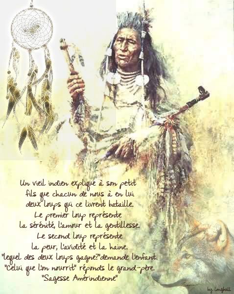 02 Sagesse Amérindienne2
