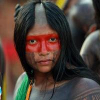 Contre la déforestion et le barrage de Belo monte