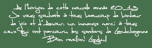 Texte voeux 2013