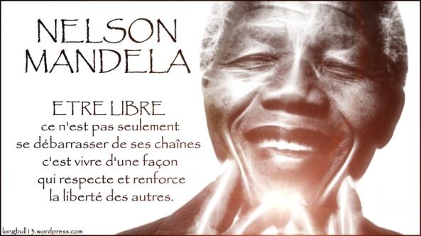 Nelson Mandela Tribute by longbull13
