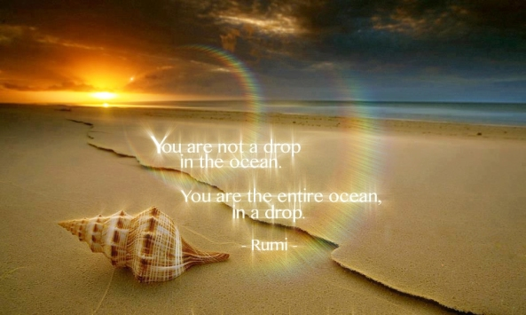 Citation Rumi ~ longbull13 effect