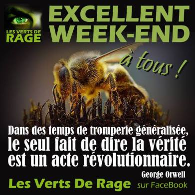 Verts de rage 0 - citation George Orwell