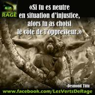 Verts de rage 7 - citation Desmond Tutu