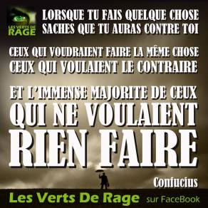 Verts de rage 8 - citation Confucius