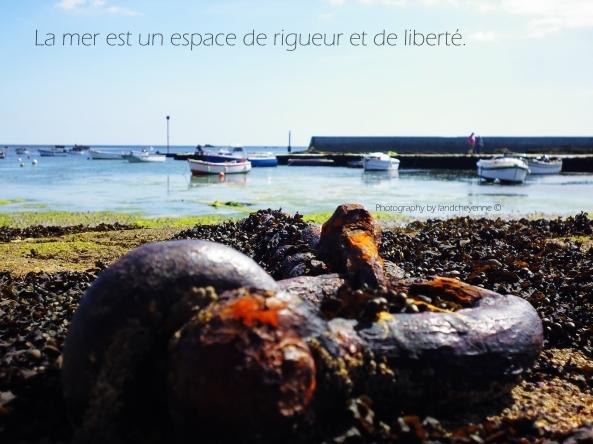 La mer est un espace de rigueur et de liberté