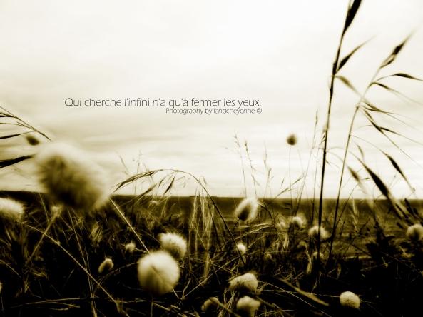 « Qui cherche l'infini n'a qu'à fermer les yeux - Citation Milan Kundera - Sepia -Photography by landcheyenne