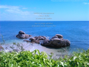 Le chant de l'océan by Longbull & Moonath ©