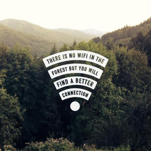 There is no wifi in the forest...