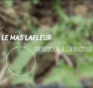 le-mas-lafleur-un-retour-a-la-nature