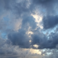 Au coeur d'une forêt de nuages - Timelapse by Landcheyenne
